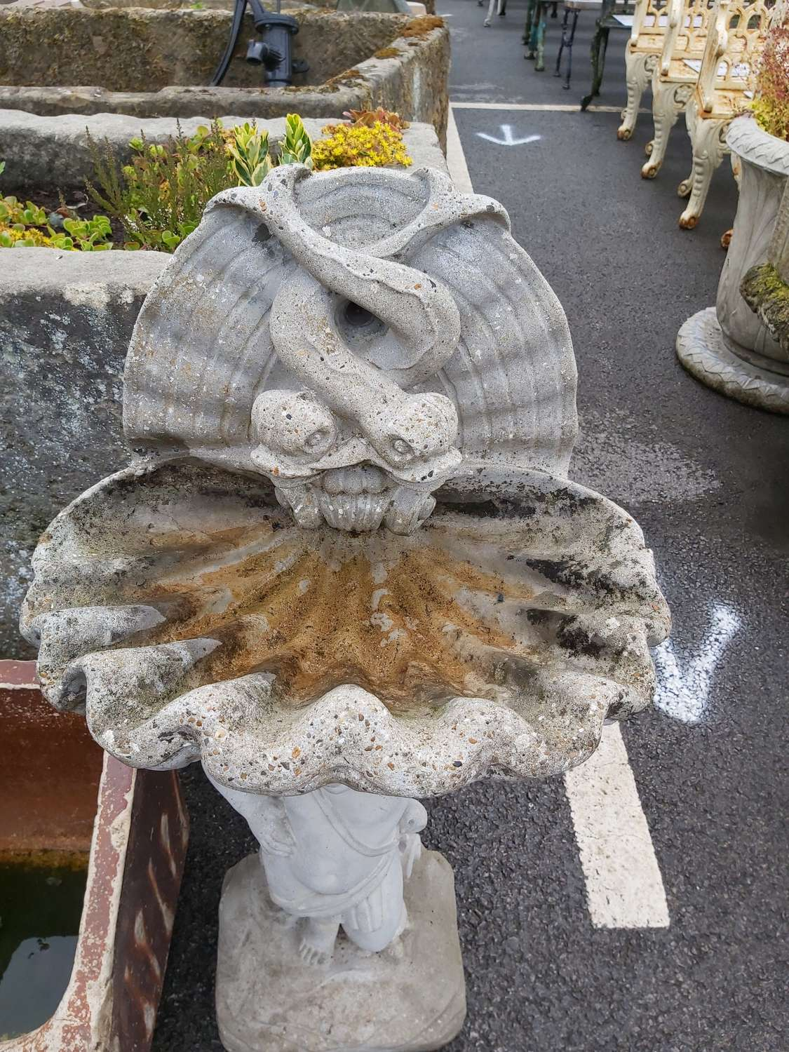 SHELL AND FISH BIRD BATH